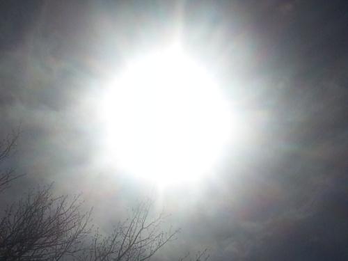 FULL spectrum SUN light...